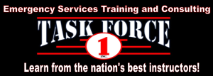 Task Force 1 Inc.