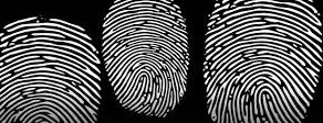 Fingerprint Science
